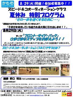 2017年度夏休み特別プログラム_01.jpg